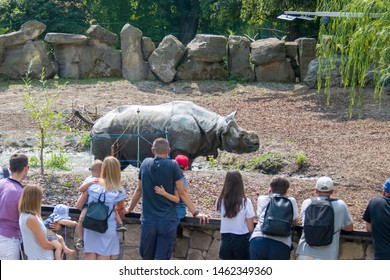 Warsaw Poland Jul 20th 2019: Tourists are watching animals in Warsaw zoo. There is a Indian rhinoceros.  The Warsaw Zoological Garden, known simply as the Warsaw Zoo (Polish: Warszawskie Zoo)