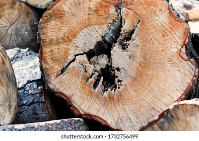 Warsaw, Poland, May 15, 2020: Warsaw during COVID-19 epidemic, blocks of wood - Shutterstock ID 1732756499