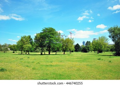 Warsaw,Poland. Juni 2016.beautiful green grass field and fresh plant in vibrant meadow against white cloud on blue sky use as natural summer season background,backdrop