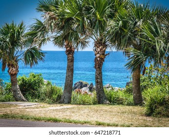Warwick Beach, Bermuda