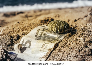 Washed out five euro bill found on beach