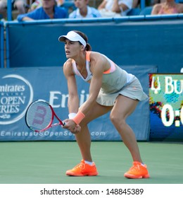 WASHINGTON - AUGUST  4, 2013: Andrea Petkovic (GER) falls to Magdalena Rybarikova (SVK, not pictured) in the final round of the Citi Open tennis tournament on August 4, 2013 in Washington