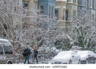Washington DC, 01 13 2019. Rowhouses on 13th St NW are backdrop for snow covered trees and urban gardens.