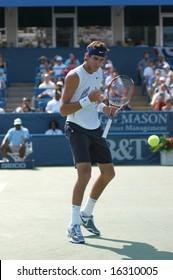 WASHINGTON, D.C. - AUGUST 17, 2008:  Juan Martin Del Potro (ARG) defeats Viktor Troicki (SRB, not pictured) to win the Legg Mason Tennis Classic