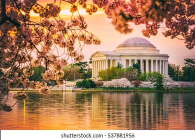 Washington, DC at the Jefferson Memorial during spring.