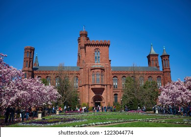 WASHINGTON, DC - March 31, 2018:  The front Victorian facade of the Smithsonian Institution Building (The Castle) with beautiful Magnolia blossom in foreground