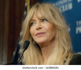 WASHINGTON, DC - NOVEMBER 5: Actress, comedian, and film director Goldie Hawn speaks at the National Press Club, November 5, 2013 in Washington, DC
