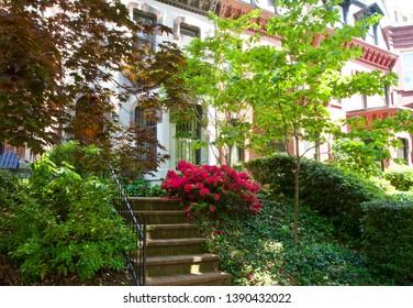 Washington DC Row House in the Spring