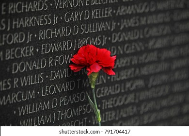 Washington, D.C., USA - 04 26 2017: A red Carnation Flower at The Vietnam Veterans Memorial as a Remembrance