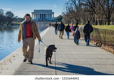 Washington DC / USA - 12-25-2014: Man walking a dog on path by the Reflecting Pool in front of the Lincoln Memorial on the National Mall.