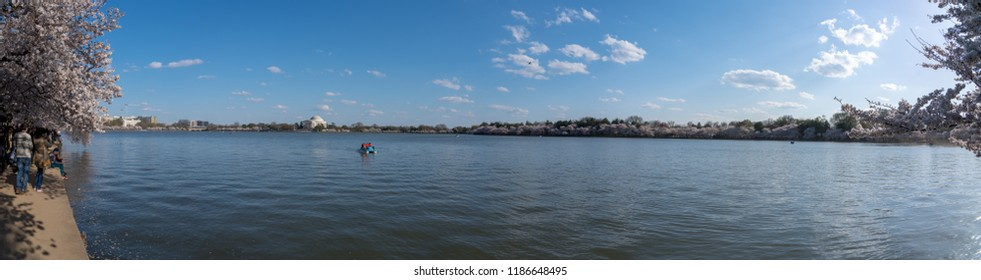 Washington DC, USA - April 08, 2018: Jefferson Memorial and cherry trees blossoming around Tidal Basin with a pedal boat.
