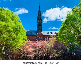 WASHINGTON DC, USA - April 15, 2019: Campus of Georgetown University, private research university -  with cherry blossoms