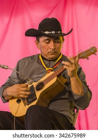 WASHINGTON, DC, USA - CIRCA JUNE 2004: Bandola player Yesid Benites Sarmiento, of Grupo Cimarron de Colombia, from Bogota, Colombia, performing at the Smithsonian Folklife Festival.