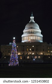 Washington, DC / USA - December 6, 2018: the United States Capitol Christmas Tree was lit this evening on the West Lawn of the Capitol.