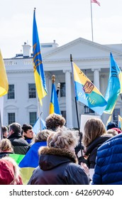 Washington DC, USA - March 6, 2014: People holding Ukrainian flags during protest by White House