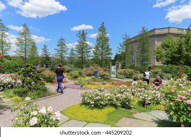 Washington DC, USA - May 19, 2014: Outdoor of national garden in Botanic Garden with blue sky and cloud. People walking around to see the difference kinds of tree and flower.