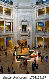 Washington, D.C., USA - November 13, 2017: Elevated view of the main hall of the Smithsonian National Museum of Natural History.