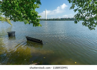 Washington, DC / USA - September 26, 2018: Washington, DC has had a record amount of rain this year and parts of downtown are flooded.