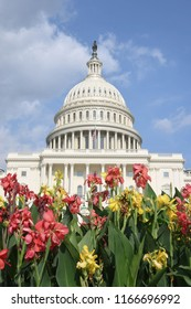 Washington, D.C./USA -- August 10, 2018: The U.S. Capitol building with flowers in the afternoon.