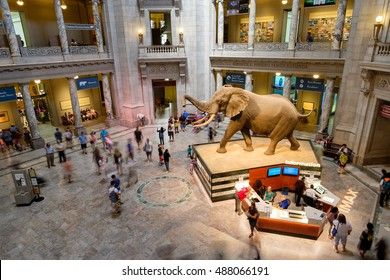 WASHINGTON D.C.,USA - AUGUST 11,2016 : Main Hall at the National Museum of Natural History in Washington D.C.