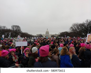 Washington, D.C./USA January 21 2017: Women's March on Washington: Protesters gathered on the National Mall.