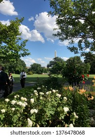 Washington DC,USA - June 26,2017:South garden seen from rose garden on a sunny day. You can see the fountain and the Washington Monument.