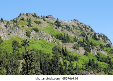 Washington granite hillside covered with deep green trees and shrubbery against solid blue skies
