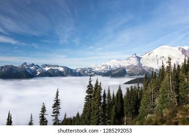 Washington, Mount Rainier National Park. Landscape from Sunrise Point.