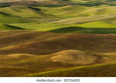 Washington Palouse.. The view of the farmland in eastern Washington as seen from Steptoe Butte State Park at sunset. The low light and low rolling hills is unique to the area-almost painterly.