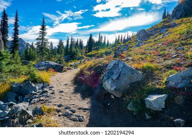 Washington, USA: Fall colors on the Naches Peak Loop trail near Mount Rainier