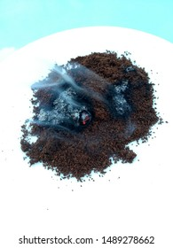 wasp drive with smoldering coffee powder