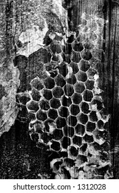 wasp nest overlaid on weathered wood