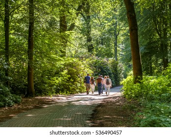 Wassenaar, Holland, June 2016: group of people talking a stroll on a lane in a park with high trees and bushes in the summer