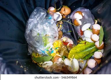 waste  food In Garbage,not waste separation