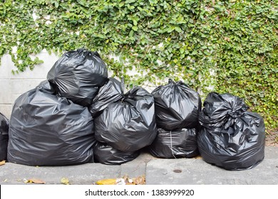 Waste separation for zero waste and safe environment concept, pile of plastic trash bags on curb outside building with plant on wall, trash with nature