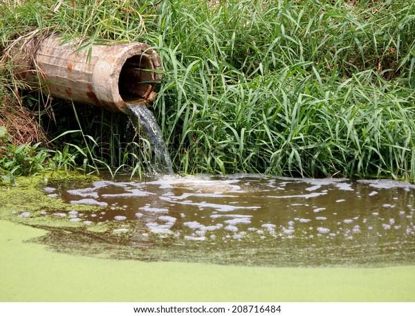 El agua residual fluye lentamente de un conducto de cemento que da directamente a un estanque natural con hierba verde en la orilla y un pequeño helado de mosquito verde claro en la superficie del agua