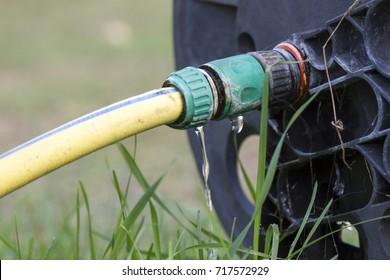 Wasting Water In The Garden, Water Leaking From A Garden Hose Spigot.  Plastic Gardening