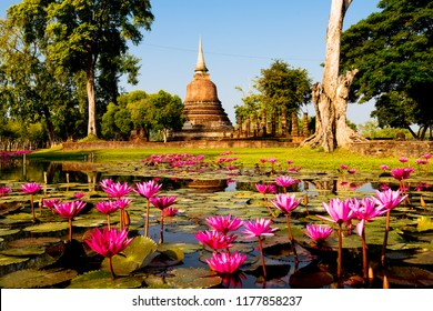 Wat Chana Songkhram in  Sukhothai historical park. Sukhothai, Thailand. This is declared as a World Heritage Site by UNESCO. (Sunset Time )