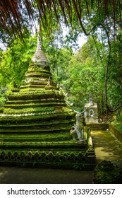 Wat Palad temple stupa in jungle, Chiang Mai, Thailand
