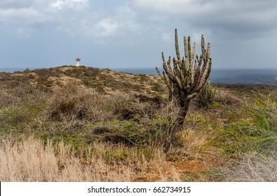Wataluma  Curacao a small island in the Caribbean