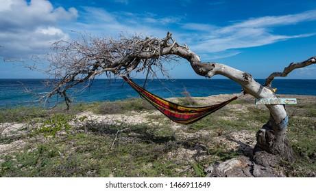 Wataluma  Views around the Caribbean island of Curacao