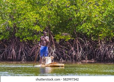 WATAMU, KENYA - January 19, 2017: Local fisherman fishing in Mida Creek mangroves