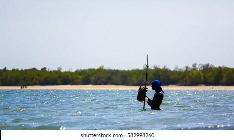 WATAMU, KENYA - January 19, 2017: Local fisherman fishing in Mida Creek mangroves.