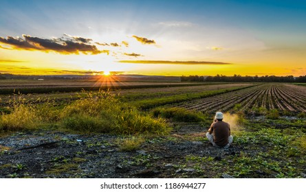 Watching the sunset, vaping, in late summer over farmlands in the black dirt region of Pine Island, New York