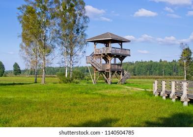 Watchtower in Bialowieza forest - Poland