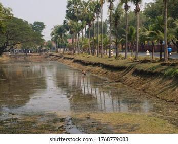 Water in Ayutthaya historical Park