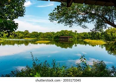 Water body amidst nature in Sungei Buloh Wetland Reserve