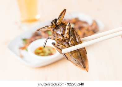 water bug fried on chopsticks on wooden background