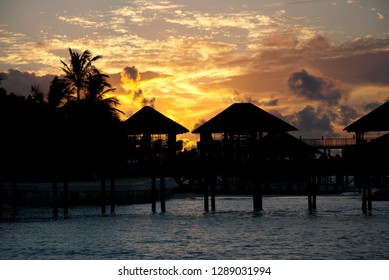 Water Bungalows with palm trees of a tropical island against the light at colorful sunset in the south sea
