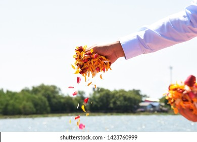 water burial funeral ceremony hand holding flower petals spreading over water in scattering ashes ceremony after cremation